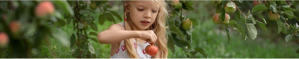 ☑️ Zabawki w zawodzie: ogrodnik ▷ sklep Namileo.com