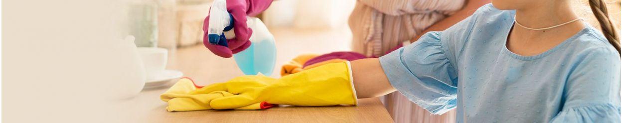 ☑️ Zabawki w zawodzie: gospodyni ▷ sklep Namileo.com
