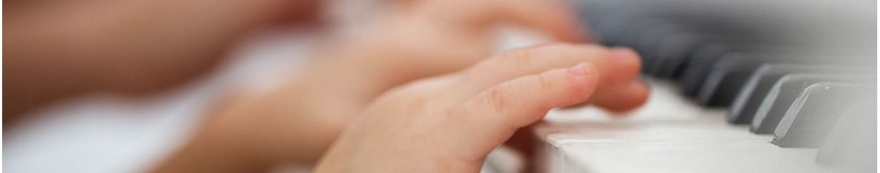 ☑️ Zabawki w zawodzie: muzyk ▷ sklep Namileo.com
